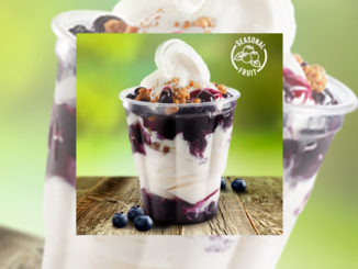 McDonald's Canada Adds New Blueberry Crumble Sundae