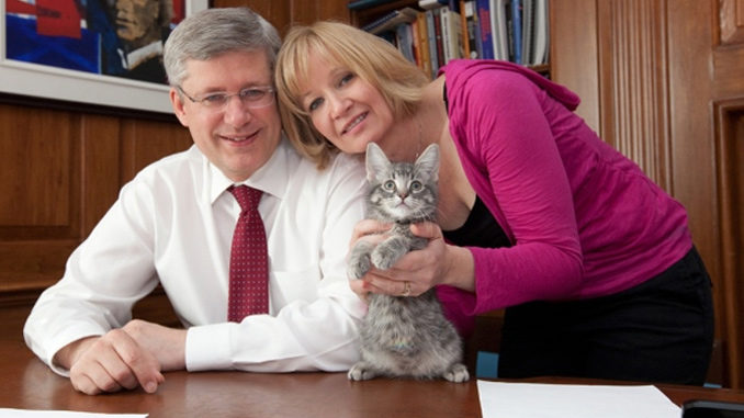 Former PM Harper and Wife Laureen Open Calgary Cat Shelter