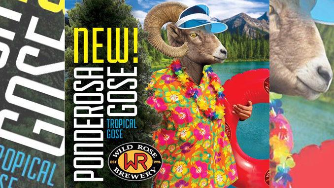 Wild Rose Brewery Unveils New Ponderosa Gose