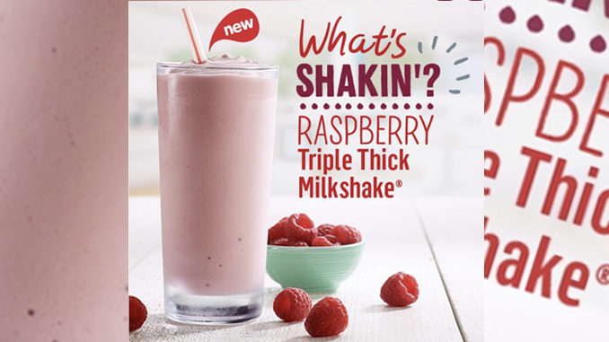 McDonald's Canada Debuts New Raspberry Triple Thick Milkshake