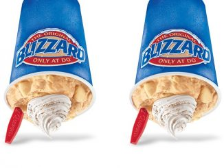Dairy Queen Canada Brings Back The Pumpkin Pie Blizzard