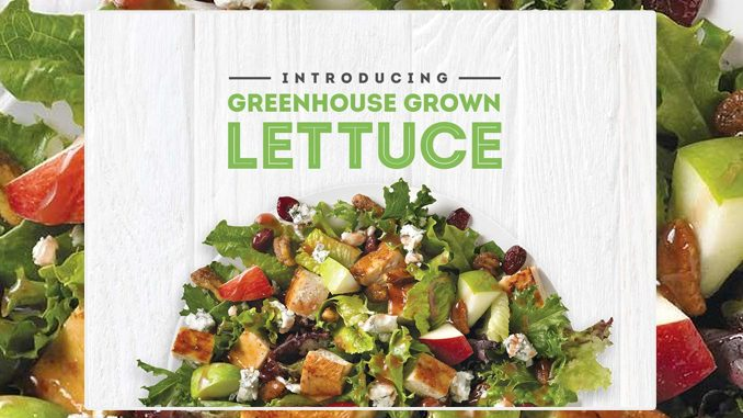 Wendy's Canada Introduces New Greenhouse Grown Lettuce